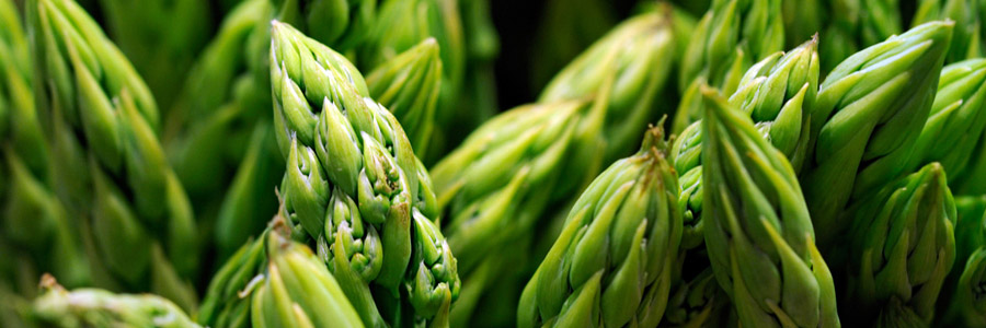 Grow it yourself: Asparagus