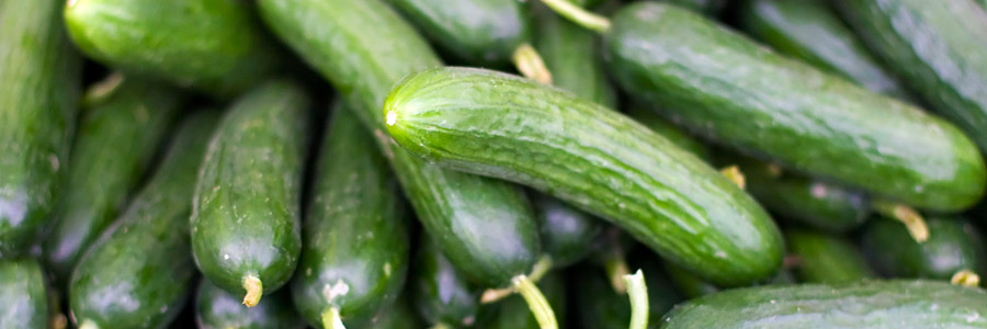 Grow it yourself: Cucumber